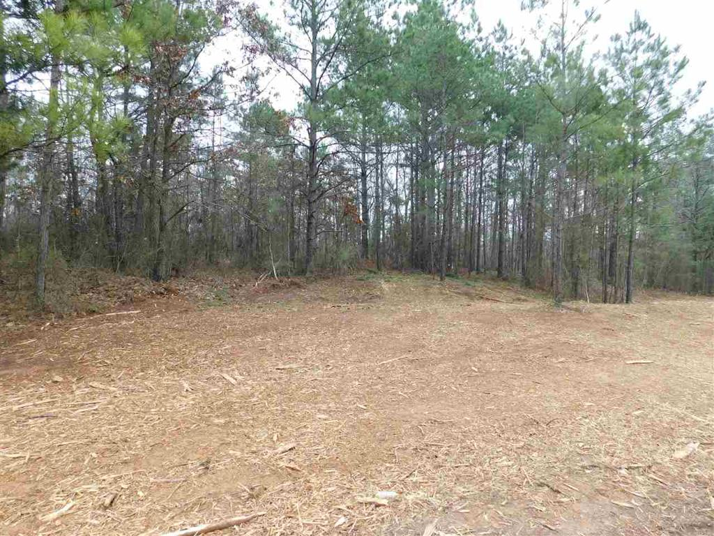 Photo of home for sale at TBD PERIWINKLE RD, Ore City TX