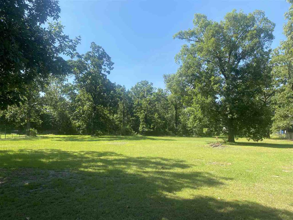 Photo of home for sale at 1059 Big Cypress Marina Road, Jefferson TX