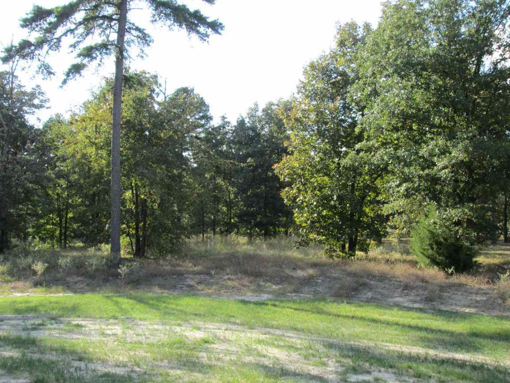 Photo of home for sale at Lot 38 Willow Creek Ranch Rd, Gladewater TX