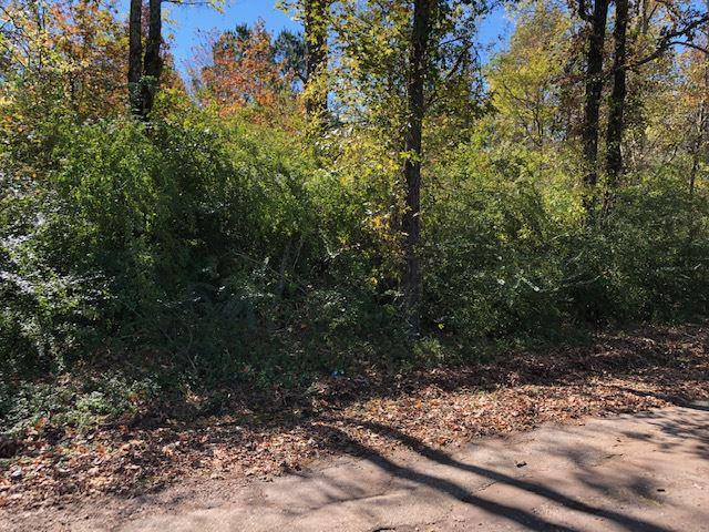 Photo of home for sale at 3.107 ac TBD CR 278 D, Kilgore TX