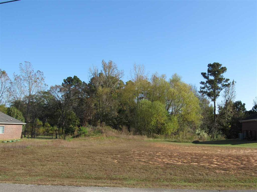 Photo of home for sale at Block E Lot 2 Birdie Ln, Gladewater TX