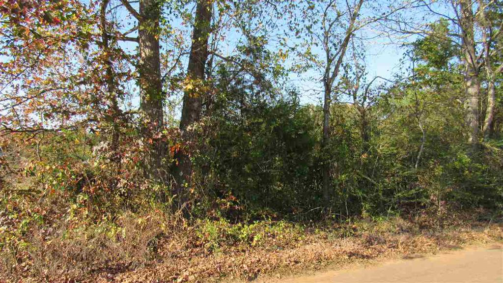 Photo of home for sale at CR 3406, Jefferson TX