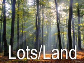 Property for sale at Lot  21 Shellie Lee Drive, Ashland,  Virginia 23005