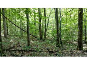Property for sale at 0 Sandy Hook Road, Goochland,  Virginia 23063