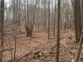 Property for sale at 0000 New Town Road, New Kent,  Virginia 23124