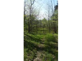 Property for sale at 0 Marlin Road, Goochland,  Virginia 23063