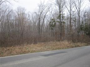 Property for sale at 1284 Marlin Road, Goochland,  Virginia 23063