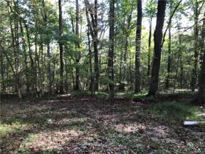 Property for sale at 1611 Salmontown Road, Goochland,  Virginia 23063