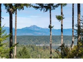 Property for sale at 123 E Alderbrook Ridge Dr, Union,  WA 98592