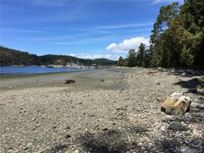 Property for sale at 5550 Deer Harbor Rd, Orcas Island,  WA 98245