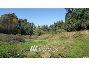 Property for sale at 0 Diamond Street, Milton,  WA 98354