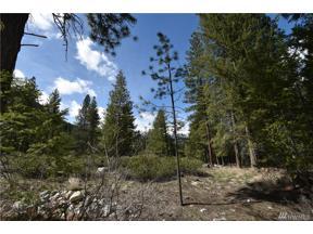 Property for sale at 33 Buttermilk Creek Road E, Twisp,  WA 98856