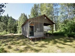 Property for sale at 47 Twispavia Lane, Twisp,  WA 98856