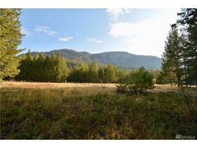 Property for sale at 56 Lost River Airport Runway, Mazama,  WA 98833