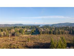 Property for sale at 13 Vantine Rd, Tenino,  WA 98589