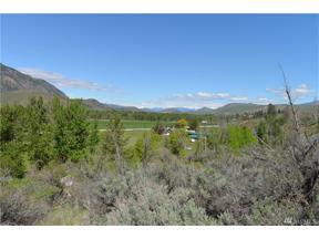 Property for sale at 0 Benson Creek Rd, Twisp,  WA 98856