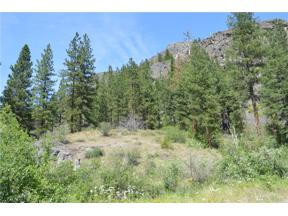 Property for sale at 18525 Highway 20, Winthrop,  WA 98862