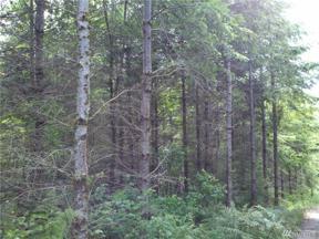 Property for sale at 1 SE Green River Gorge Rd, Black Diamond,  WA 98010