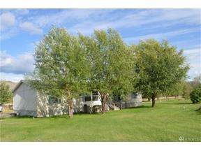 Property for sale at 104 Twisp Airport Rd, Twisp,  WA 98856