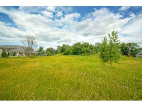 Property for sale at 815 Big Stone Tr, Madison,  Wisconsin 53562