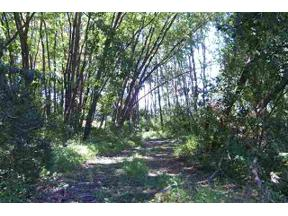 Property for sale at L3 Uphoff Rd, Cottage Grove,  Wisconsin 53527